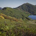 Экотуризм в лесах Колхиды